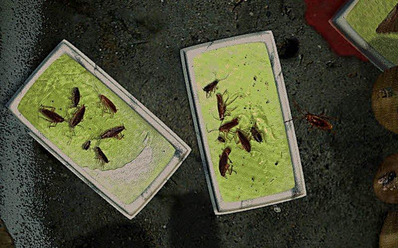 Gefährliches Terrain: Tödliche Klebefallen gilt es geschickt zu umkrabbeln. (Bild: Pulse Entertainment)