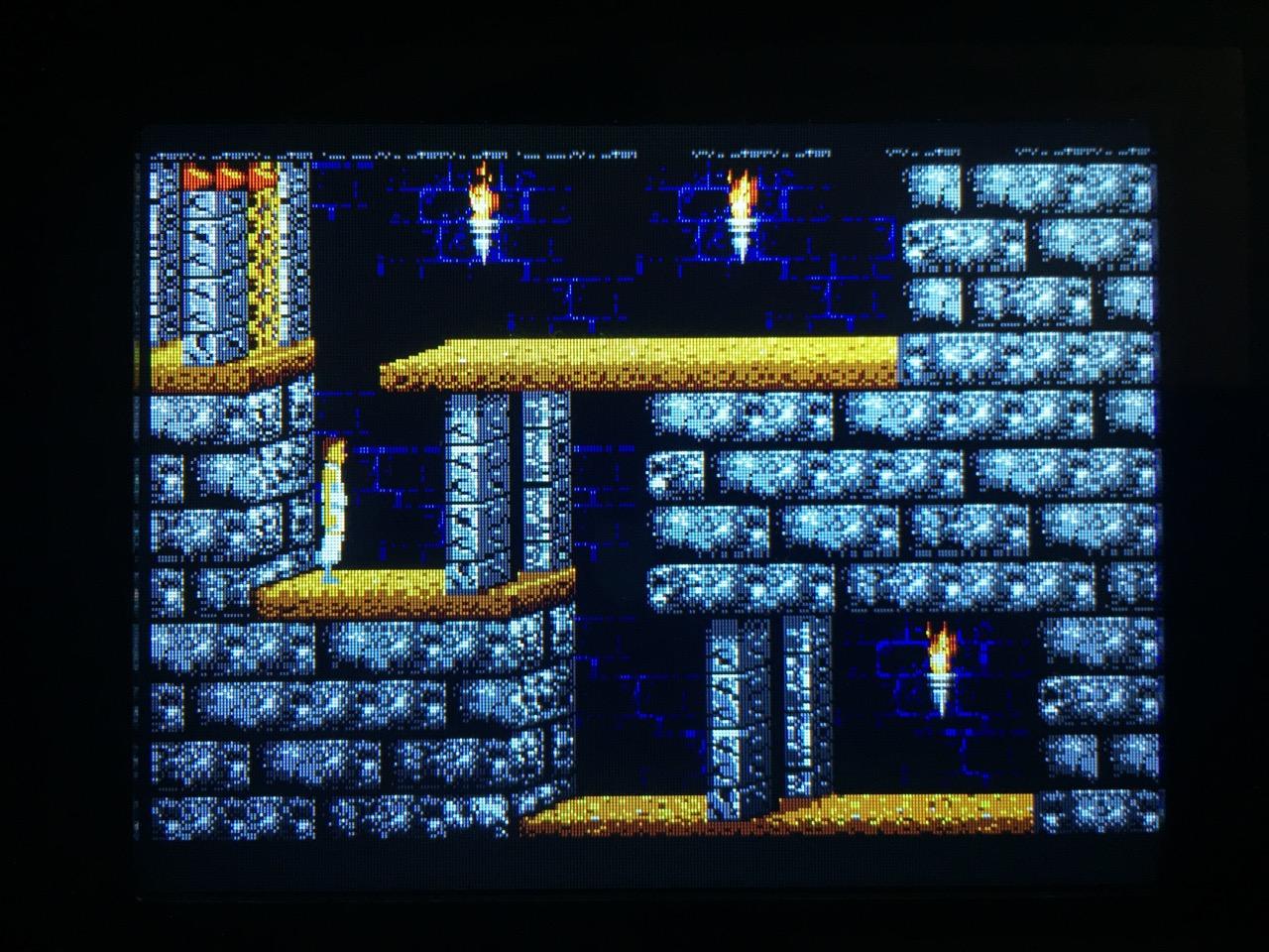 Screenshot von Prince of Persia auf dem Game Gear mit LCD Mod. (Bild: André Eymann)