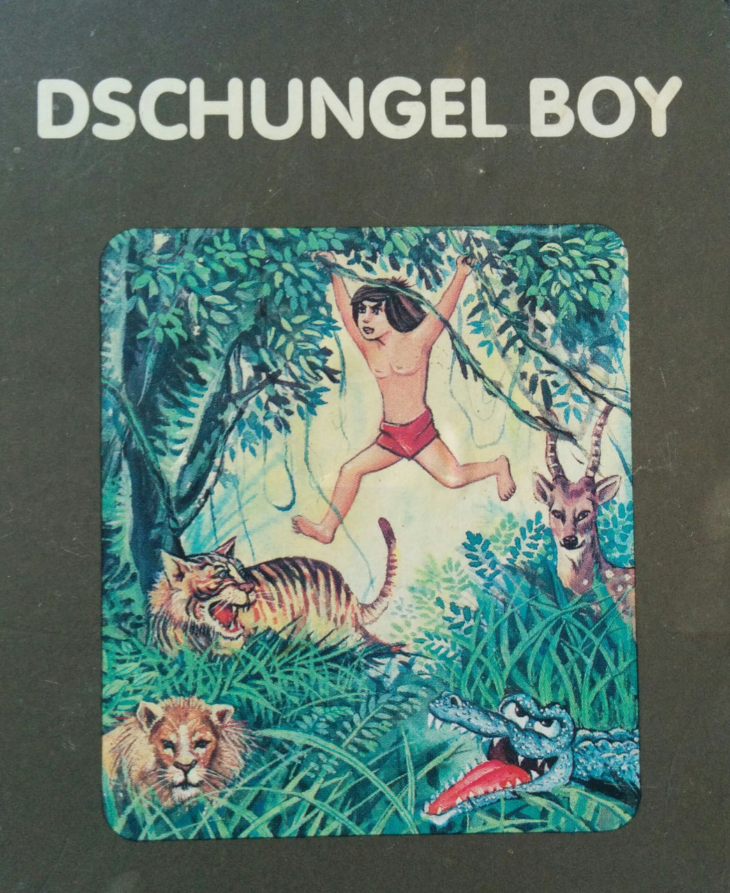 Cover des Spielmoduls, Dschungel Boy, Quelle, 1983. (Bild: Florian Weber)
