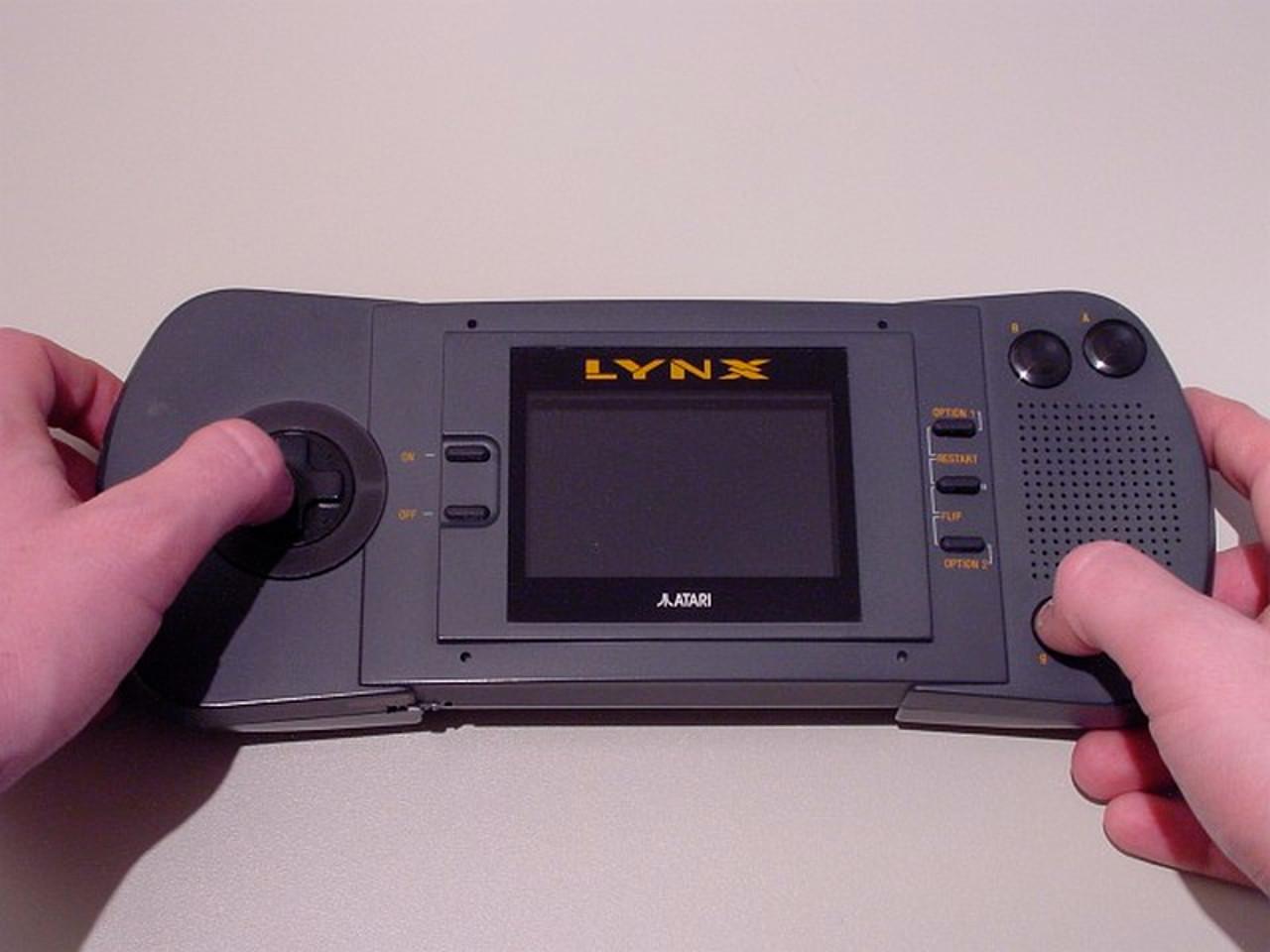 So sieht der Lynx in den Händen eines Erwachsenen aus. (Bild: André Eymann)