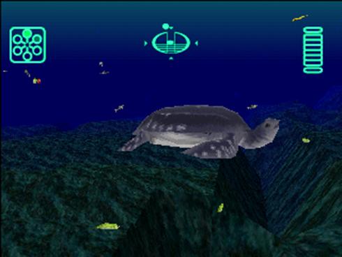 Aquanaut's Holiday: Eine Schildkröte kommt ins Bild. (Bild: Mathias Nowatzki)