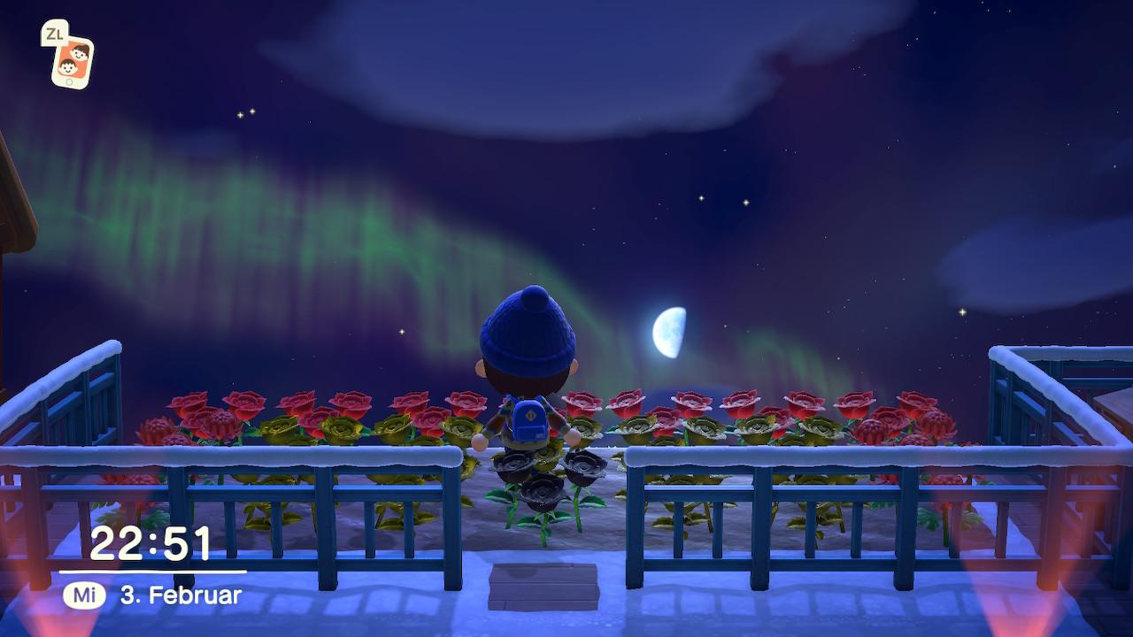 Nachthimmel mit Polarlicht. (Bild: Lenny)