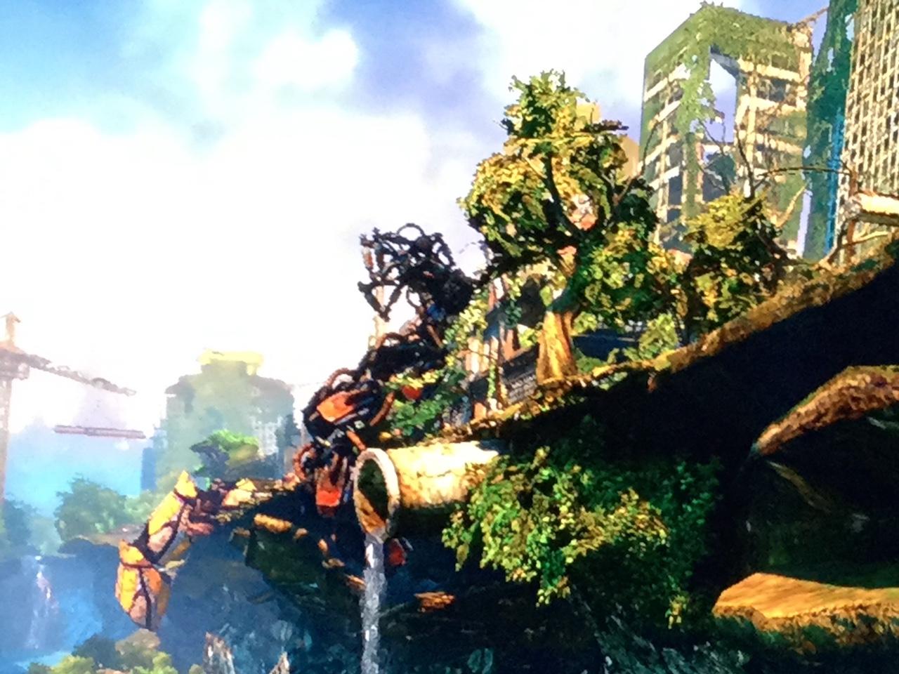Die Natur hat sich die zerstörten Städte zurückerobert. (Bild: Lennart Koch)
